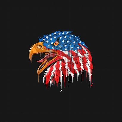 4k Eagle Flag American Minimal Wallpapers Resolution
