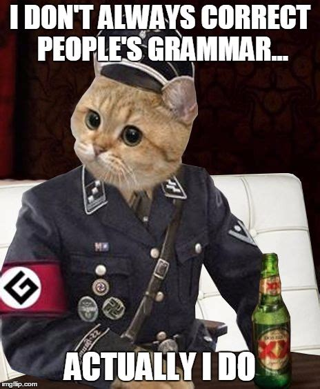 Correct Grammar Meme - most interesting cat imgflip