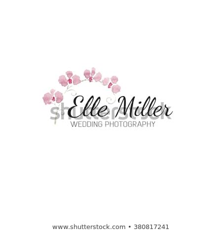 flower logo stock images royalty  images vectors