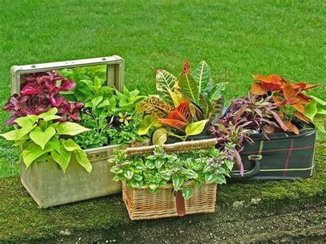 diy garden ideas 25 diy low budget garden ideas diy and crafts