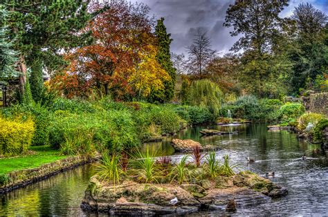 Gardens Pond Hdr Shrubs Nature Wallpapers Hd Desktop