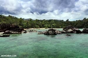 Travel in Madagascar: strange wildlife and stunning landscapes