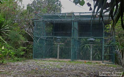 L'île Aux Aigrettes, Laboratoire Pour La Conservation De