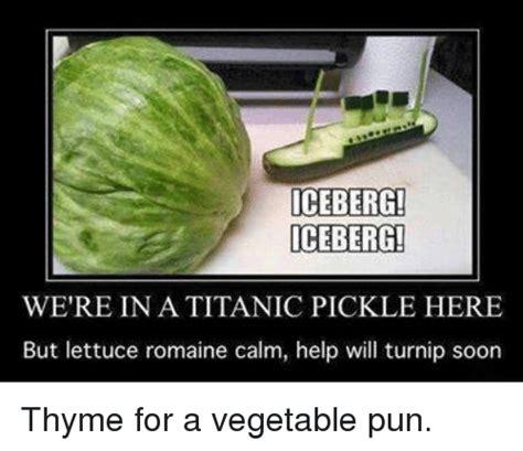 Meme Puns - funny pun memes of 2017 on sizzle puns