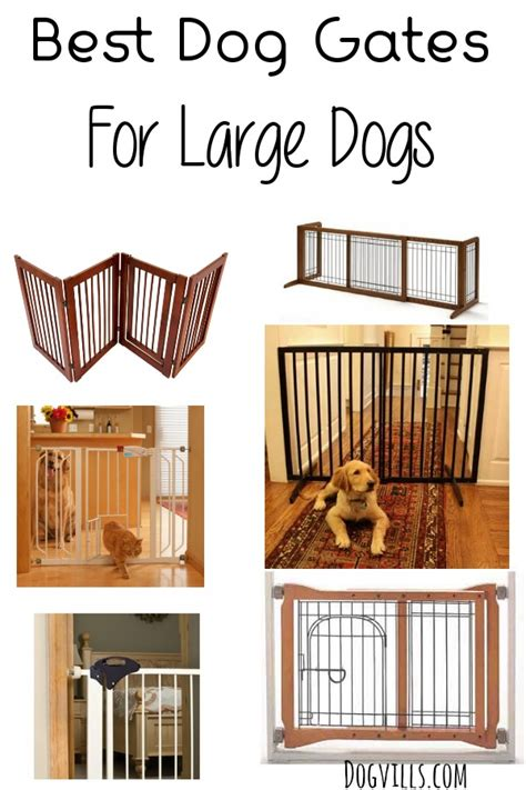 dog gates  large dogs dogvills