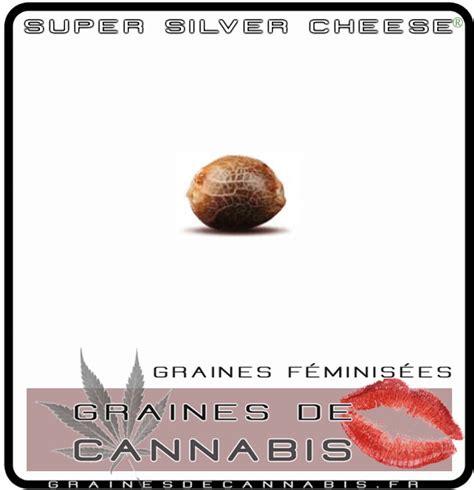 cannabis f 233 minis 233