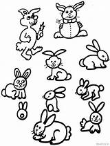 Coloring Bunny Cute Rabbits Rabbit Pages Widgets Amazon sketch template
