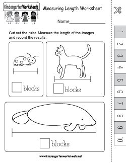 kindergarten measurement worksheets fun length