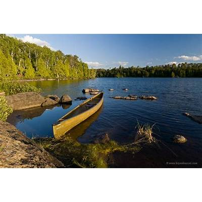 Boundary Waters Canoe Area WildernessLakes Pine Trees