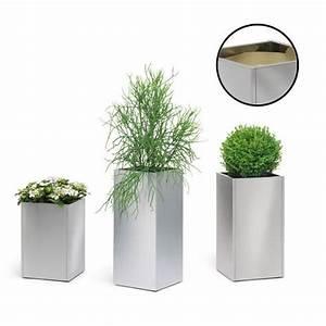 Pot Pour Plante Intérieur : plante d interieur topiwall ~ Melissatoandfro.com Idées de Décoration