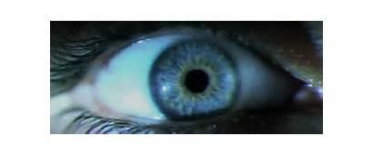 Eye Cybernetic Eyes Gifs Animated Gifer Robot