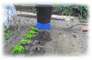 Arrosage Goutte à Goutte Potager : magazine petit jardin n58 juin 2011 jardinage plantes ~ Dailycaller-alerts.com Idées de Décoration