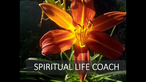 Preferred spiritual life coach reviews