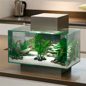 Petit Aquarium Design : aquarium fluval edge led fluval aquariums pet decor ~ Melissatoandfro.com Idées de Décoration
