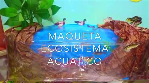 idea de ecosistema acuatico en lago maqueta youtube