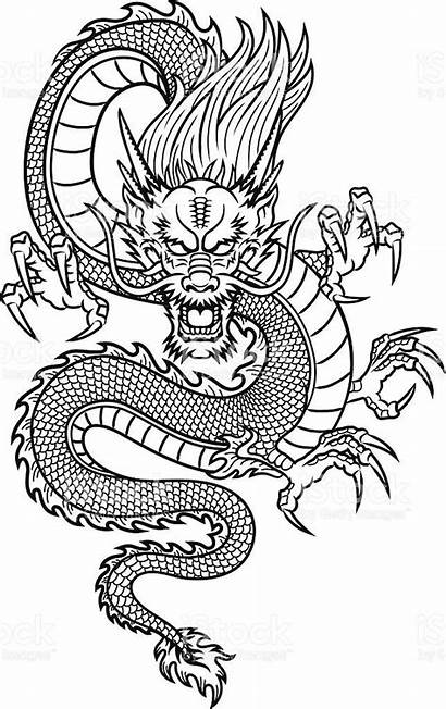 Dragon Traditional Vector Illustration Asian Chinese Japanese
