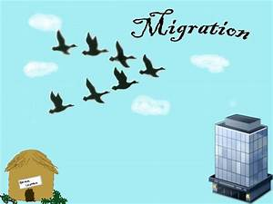 Migration: 1 Year Anniversary in Ohio! | IX Web Hosting Blog