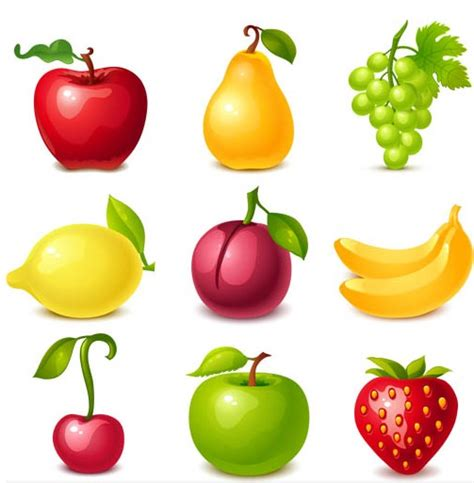 Fruits Free Vector  Ai Format Free Vector Download