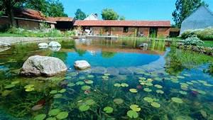 Piscine naturelle biologique jardi brico for Wonderful plage piscine sans margelle 10 piscine naturelle biologique jardi brico