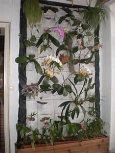 Grand Bac Pour Orchidées : mur v g tal ~ Melissatoandfro.com Idées de Décoration