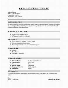 Sample prehensive Resume Best Buy Research Paper