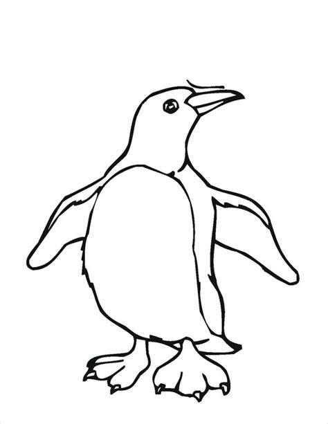 penguin template animal templates  premium templates