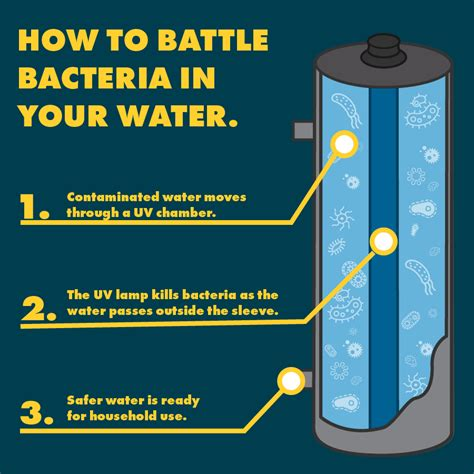 battle bacteria   water  uv disinfection