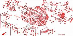 Alternator Bracket Engine Stiffener Engine Vti 1999 Civic