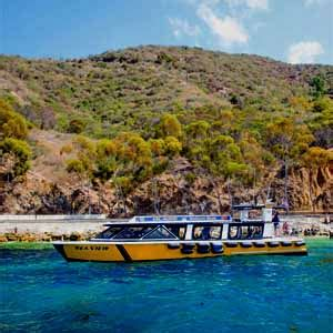 Catalina Island Glass Bottom Boat by The Seaview Glass Bottom Boat Tours On Catalina Island