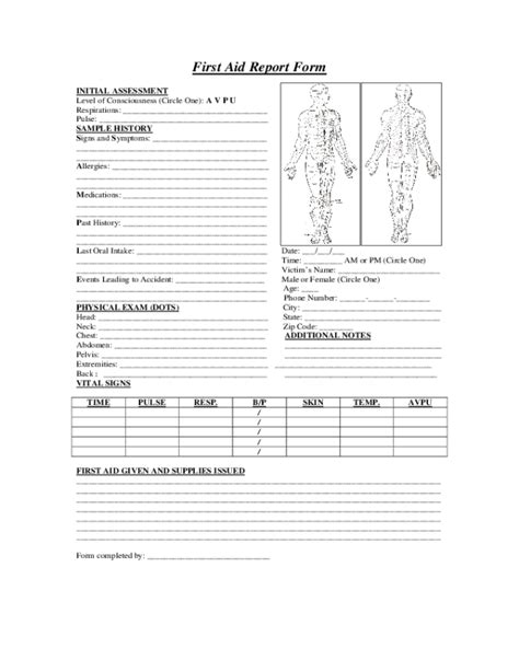 aid report form fillable printable