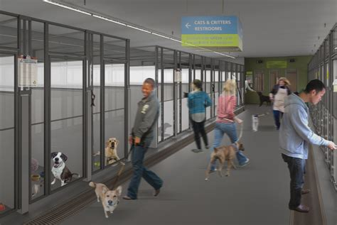 seattle animal shelters dog kennels    facelift