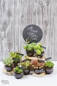 DECORATING WITH SUCCULENTS - Oh It's Perfect