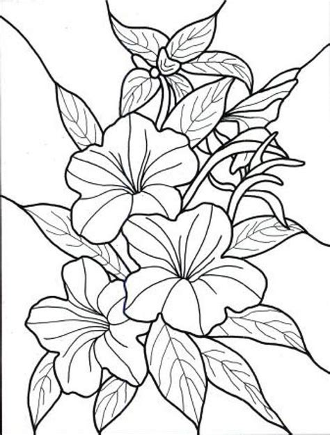 TROPICAL FLOWERS STAINED GLASS COLORING BOOK Flower