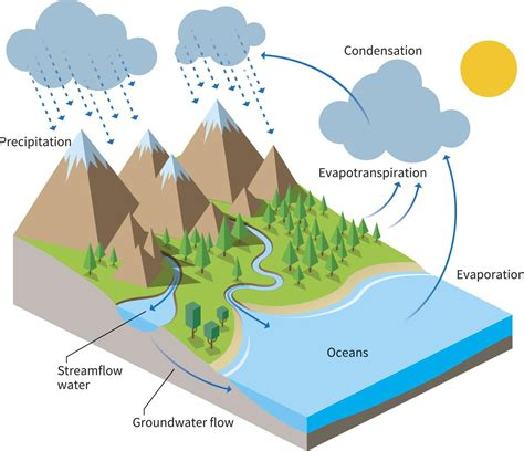 diagrams water cycle project ideas basic water cycle