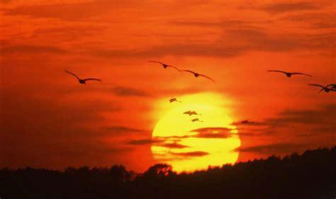 عکس های فوق العاده زیبا از غروب خورشید