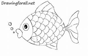 Outline Drawing For Kids how to draw a fish for kids ...
