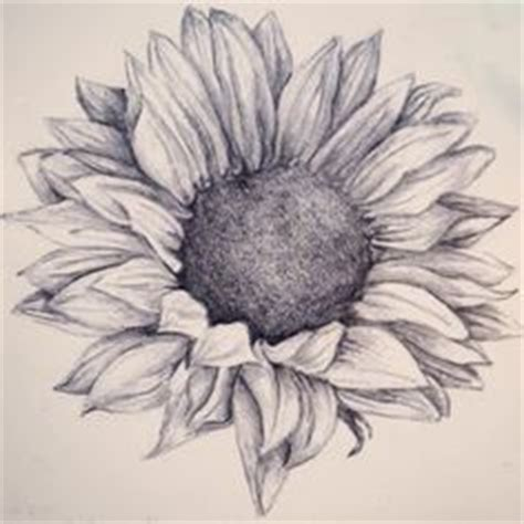 sunflower drawing tumblr buscar  google girasol art pinterest sunflower drawing
