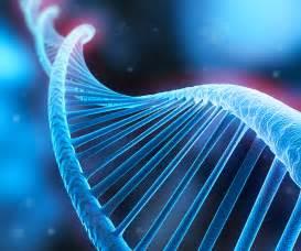 DNA Forensic Evidence