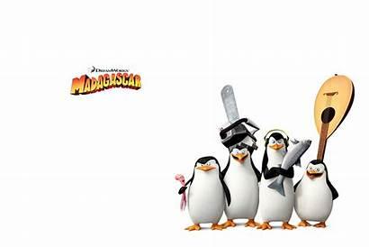 Madagascar Penguins Penguin Dreamworks Animation Private Cartoon