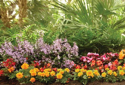 planting a flower garden at the home depot