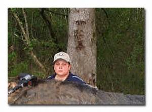 Update: Giant Hog Hoax Exposed! « Dvorak News Blog