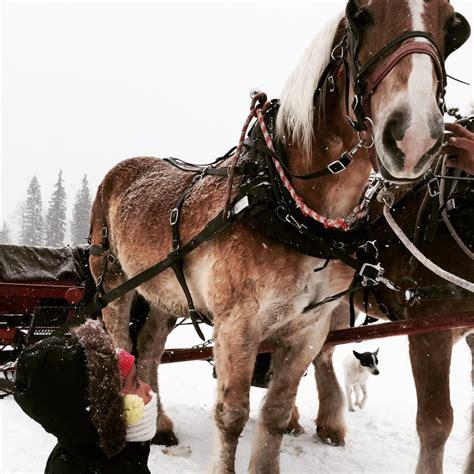 durango horseback riding