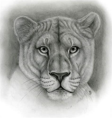 dibujos de animales totalmente realistas taringa