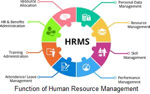 function  human resource management assignment locus