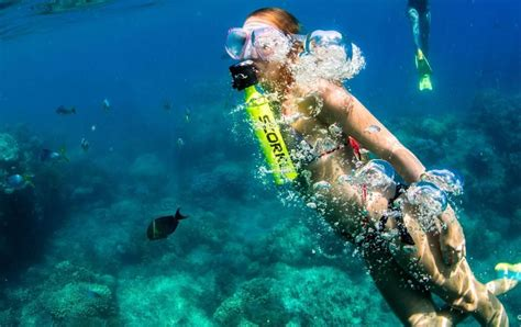 Underwater Dive - scorkl underwater breathing device 187 gadget flow