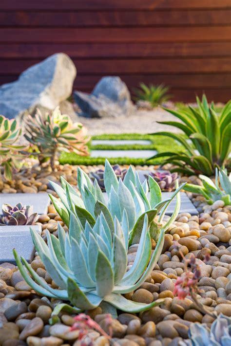 zen landscape garden modern succulent contemporary desert elements designing planting architecture plants include outdoor gardens succulents landscaping seating orange area