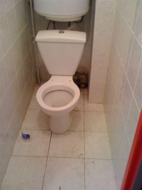 comment recurer les toilettes comment cacher tuyaux toilettes
