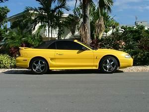 Ford Mustang Photo Gallery: 1998 Cobra Convertible   Shnack.com