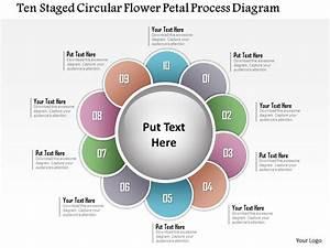 1214 Ten Staged Circular Flower Petal Process Diagram