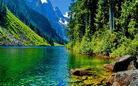 Beautiful Nature Images Free To Download